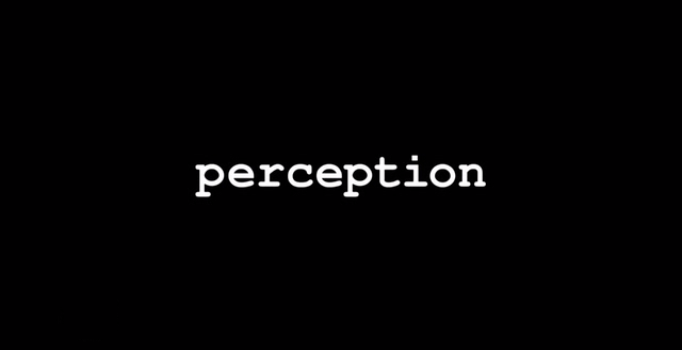 perception neureka