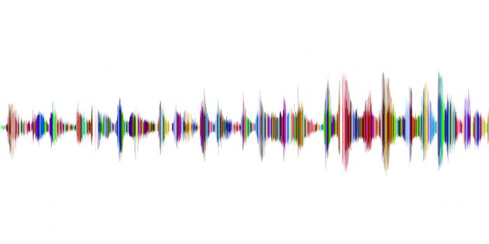 audiobranding-neureka