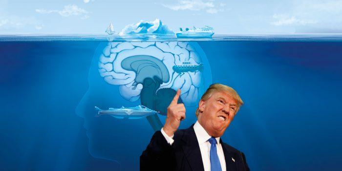 La neurocomunicazione di Donald Trump lo ha portato alla vittoria nelle elezioni degli Stati uniti d'America