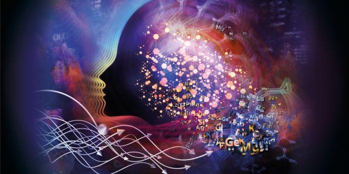 Il linguaggio è una funzione che si evolve e ci fa evolvere all'interno del nostro accoppiamento strutturale con i nostri simili.