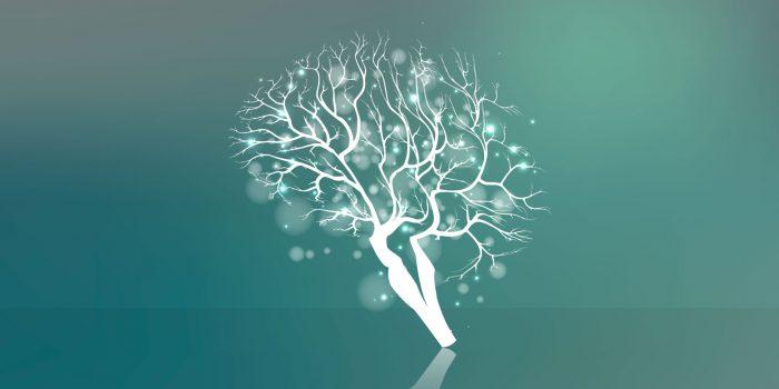 Le emozioni sono alla base della nostra vita e delle azioni che svolgiamo quotidianamente in quanto hanno un notevole impatto sulle percezioni e sulle esperienze.