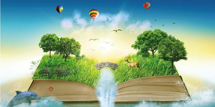 apprendimento, ricordo, conoscenza