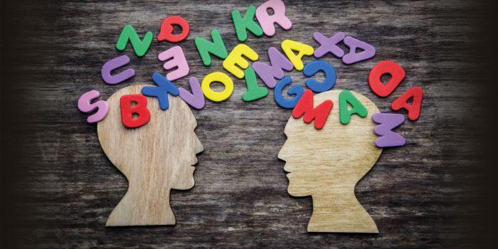 La comunicazione e il linguaggio
