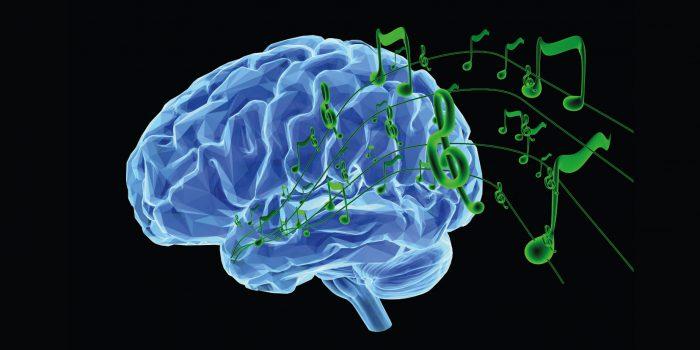 Musicalità comunicativa tra neuroscienze e psicobiologia comportamentale- I parte