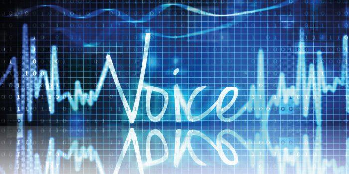 Reminiscenze storiche dell'onda vocale – parte 2° - Le corde vocali e strumenti di analisi dell'onda