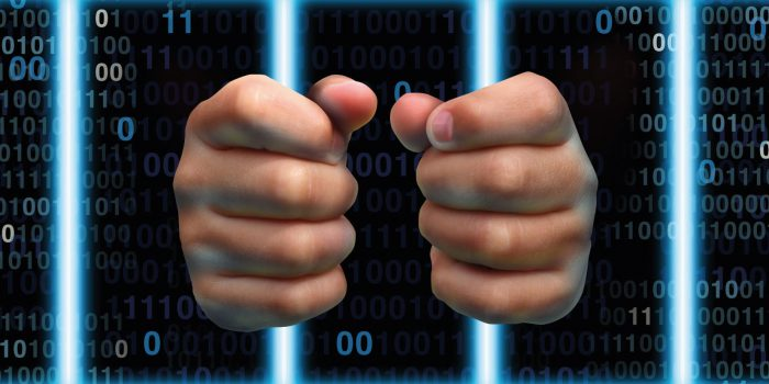 Le nuove Cyber-dipendenze: la dipendenza da Internet (IAD) - parte seconda