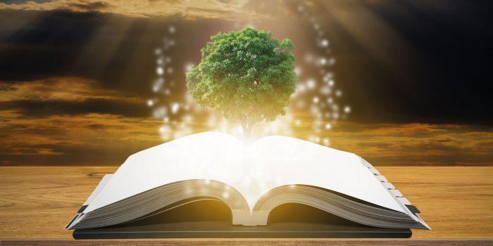 Dalla psicologia alla spiritualità (glossario minimo): La conoscenza