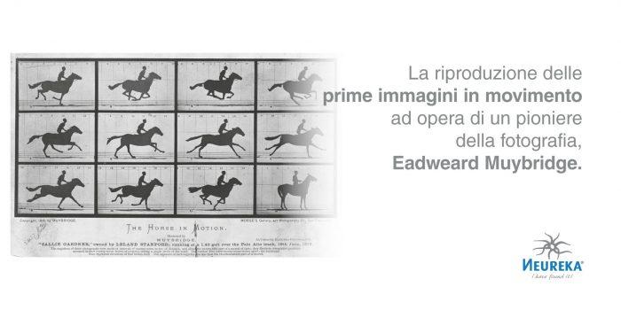 La riproduzione delle prime immagini in movimento ad opera di un pioniere della fotografia, Eadweard Muybridge